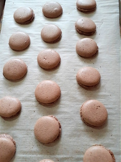 Vegan macaron shells