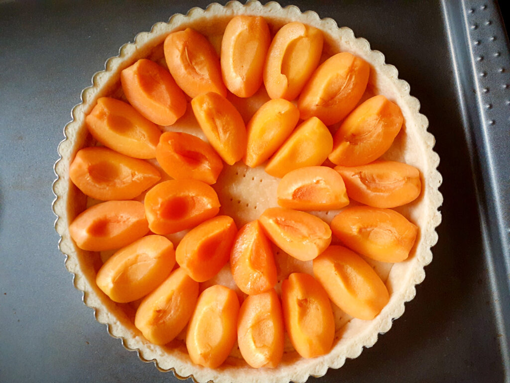 Pie pan with sweet pastry dough and fresh apricots cut in four on top, before baking.
