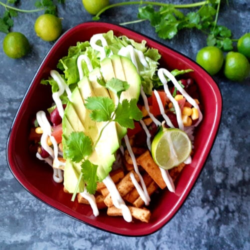 Burrito bowl with key lime and coriander on the table